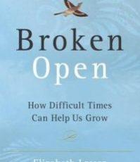 brokenopencover